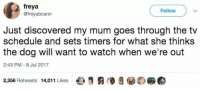 """<p>Mums are the best :) via /r/wholesomememes <a href=""""http://ift.tt/2tTt6WB"""">http://ift.tt/2tTt6WB</a></p>: freya  @freyabcann  Follow  Just discovered my mum goes through the tv  schedule and sets timers for what she thinks  the dog will want to watch when we're out  2:43 PM - 8 Jul 2017  2,356 Retweets 14,011 Likes e  €) <p>Mums are the best :) via /r/wholesomememes <a href=""""http://ift.tt/2tTt6WB"""">http://ift.tt/2tTt6WB</a></p>"""