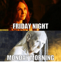 friday night: FRIDAY NIGHT  STARECAT COM  MONDAY MORNING