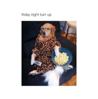 THIS IS LITERALLY ME OMG AND ITS LIKE 5AM AND IN TAKING A SMALL BREAK: friday night turn up THIS IS LITERALLY ME OMG AND ITS LIKE 5AM AND IN TAKING A SMALL BREAK