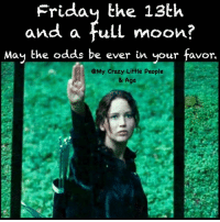 Along with an IEP meeting: Friday the 13th  and a full moon?  May the odds be ever in your favor  eMy Crazy Little People  & Aga Along with an IEP meeting