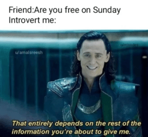 .: Friend:Are you free on Sunday  Introvert me:  Wmixodes  u/amalsreesh  That entirely depends on the rest of the  information you're about to give me. .