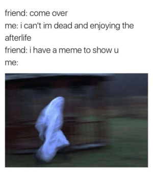 I Have A Meme: friend: come over  me: i can't im dead and enjoying the  afterlife  friend: i have a meme to show u  me: