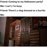 Halloween, Party, and Relatable: Friend: Coming to my Halloween party?  Me: I can't, l'm busy  Friend: There's a dog dressed as a burrito  Me: i'll be there in 5 min!!!!