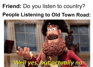 just a good ol' fashion meme: Friend: Do you listen to country?  People Listening to Old Town Road:  FlamingOORAROO  Well ves, but actually no just a good ol' fashion meme
