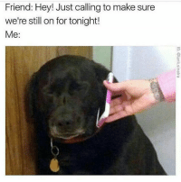 Friend: Hey! Just calling to make sure  we're still on for tonight!  Me Just leave me alone 😆