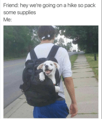 Wholesome, Friend, and Hey: Friend: hey we're going on a hike so pack  some supplies  Me: <p>Wholesome hiking supplies</p>