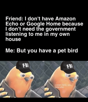 Birds are not real: Friend: I don't have Amazon  Echo or Google Home because  I don't need the government  listening to me in my own  house  Me: But you have a pet bird  FBI  FBI  Listen here, you  little shit Birds are not real