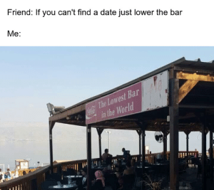 meirl: Friend: If you can't find a date just lower the bar  Me:  ar  Low  res  The  in  Wold  the meirl