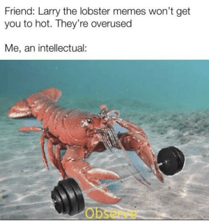 Memes, Reddit, and Lobster: Friend: Larry the lobster memes won't get  you to hot. They're overused  Me, an intellectual:  Obse lobsters are offically in now