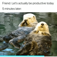 Today, Friend, and Yep: Friend: Let's actually be productive today  5 minutes later: Yep 😅