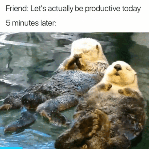 Yep 😅: Friend: Let's actually be productive today  5 minutes later: Yep 😅