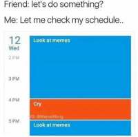 Let Me Check My Schedule: Friend: let's do something?  Me: Let me check my schedule..  12  Look at memes  Wed  2 PM  3 PM  4 PM  Cry  G: @MemeMang  5 PM  Look at memes