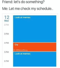 Let Me Check My Schedule: Friend: let's do something?  Me: Let me check my schedule.  12I  Look at memes  Wed  2 PM  3 PM  4 PM  Cry  IG: @MemeMang  5 PM  Look at memes  6 PM