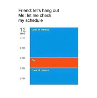 Memes 6: Friend: let's hang out  Me: let me check  my schedule  Look at memes  Wed  2 PM  3 PM  4 PM  Cry  5 PM  Look at memes  6 PM