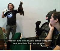 Always be batman: Friend of mine went to a bat exhibit today, she  saw more bats than she expected Always be batman