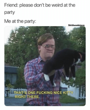 Fucking, Party, and Weird: Friend: please don't be weird at the  party  Me at the party:  Shitheadsteve  S ONE FUCKING NICE KITTY  RIGHT THERE. decent