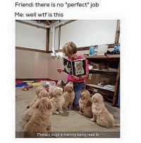 "Dogs, Love, and Memes: Friend: there is no ""perfect"" job  Me: well wtf is this  DOG  Therapy dogs in training being read to Clearing the Phone to Send More Memes to my Love Pt. 1"