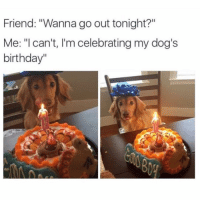 "Memes, 🤖, and Bieber: Friend: ""Wanna go out tonight?""  Me: ""I can't, I'm celebrating my dog's  birthday"" 😂😂lol - - - - - - - - text post textpost textposts relatable comedy humour funny kyliejenner kardashians hiphop follow4follow f4f kanyewest like4like l4l tumblr tumblrtextpost imweak lmao justinbieber relateable lol hoeposts memesdaily oktweet funnymemes hiphop bieber trump"