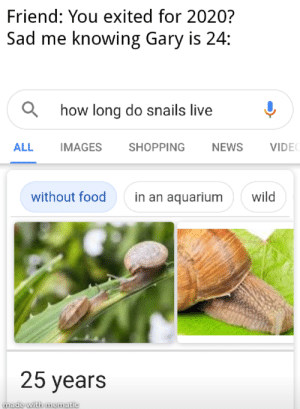 Food, News, and Reddit: Friend: You exited for 2020?  Sad me knowing Gary is 24:  how long do snails live  NEWS  ALL  IMAGES  SHOPPING  VIDE  without food  wild  in an aquarium  25 years  made with mematic Oh man 🥺