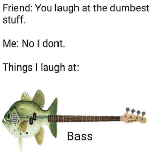 BAsssssss: Friend: You laugh at the dumbest  stuff  Me: No I dont.  Things I laugh at  eeo  Bass BAsssssss