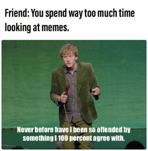 I am offended.: Friend: You spend way too much time  looking at memes.  Never before have I been so offended by  somethingI100 percent agree with. I am offended.