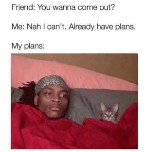 MeIRL, Friend, and You: Friend: You wanna come out?  Me: Nah I can't. Already have plans.  My plans: meirl
