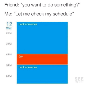 "Memes 6: Friend: ""you want to do something?""  Me: ""Let me check my schedule""  12  Look at memes  Wed  2 PM  3 PM  4 PM  Cry  5 PM  Look at memes  6 PM  SEE  MORE"