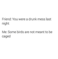 Drunk, Birds, and Humans of Tumblr: Friend: You were a drunk mess last  night  Me: Some birds are not meant to be  caged