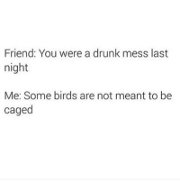 If I wanna get turnt on a Monday - Ima get turnt on a Monday 😂🍷🙏🏼: Friend: You were a drunk mess last  night  Me: Some birds are not meant to be  caged If I wanna get turnt on a Monday - Ima get turnt on a Monday 😂🍷🙏🏼