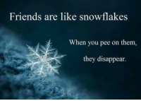 snowflake: Friends are like snowflake  When you pee on them,  they disappear.