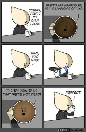 Coffee is always my friend.: FRIENDS ARE MEANINGLESS  IN THE LANDSCAPE OF TIME!  COFFEE,  YOU'RE  MY  ONLY  FRIEND  HMM,  TOO  DARK  FRIENDS REMIND US  THAT WE'RE NOT DEAD!  PERFECT  POA RaphComic Coffee is always my friend.