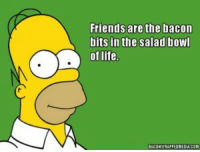 Friends, Life, and Bacon: Friends are the bacon  bits in the salad bowl  of life.