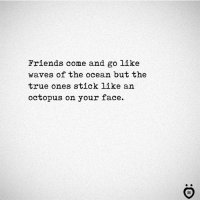 Friends, True, and Waves: Friends come and go like  waves of the ocean but the  true ones stick like an  octopus on your face.