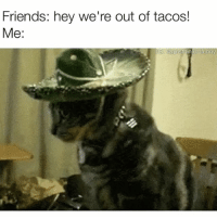 Funny, Funny What, and Tacocat: Friends: hey we're out of tacos!  Me:  GE @girsthinkim funny WHAT!! Not on tacotuesday 😱 tacocat needmoretacos fabsquad tacosquad
