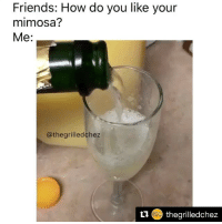 With a single drop of OJ please 🍊💧 @thegrilledchez: Friends: How do you like your  mimosa?  Me:  @thegrilledchez  11 thegrilledchez With a single drop of OJ please 🍊💧 @thegrilledchez