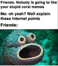 Friends, Gg, and Internet: Friends: Nobody is going to like  your stupid coral memes  Me: oh yeah? Well explain  these internet points  Friends: lol gg m8