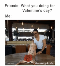 This years Valentine's summed up: 😩😭 (@nusr_et): Friends: What you doing for  Valentine's day?  Me  anusretgokce 34  aMEMES This years Valentine's summed up: 😩😭 (@nusr_et)
