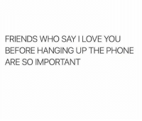 Memes, 🤖, and Who Says: FRIENDS WHO SAY I LOVE YOU  BEFORE HANGING UP THE PHONE  ARE SO IMPORTANT tag your friends