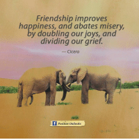 Cicero: Friendship improves  happiness, and abates misery,  y doubling our joys, and  dividing our grief.  Cicero  Positive outlooks