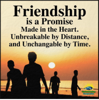 Memes, Heart, and Time: Friendship  is a Promise  Made in the Heart.  Unbreakable by Distance,  and Unchangable by Time. Understanding Compassion ❤️