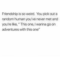 "Dank, Weird, and Friendship: Friendship is so weird. You pick out a  random human you've never met and  you're like,"" This one, I wanna go on  adventures with this one"" 💯😂"