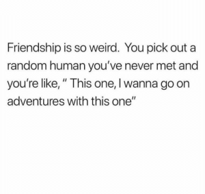"This is exactly how it goes: Friendship is so weird. You pick out a  random human you've never met and  you're like,"" This one, I wanna go on  adventures with this one"" This is exactly how it goes"