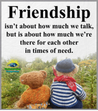 Memes, Compassion, and Friendship: Friendship  isn't about how much we talk,  but is about how much we're  there for each other  in times of need.  Compassion Understanding Compassion Group ❤️