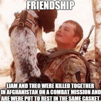 . ✅ Double tap the pic ✅ Tag your friends ✅ Check link in my bio for badass stuff - usarmy 2ndamendment soldier navyseals gun flag army operator troops tactical armedforces weapon patriot marine usmc veteran veterans usa america merica american coastguard airman usnavy militarylife military airforce tacticalgunners: FRIENDSHIP  LIAM AND THEO WERE KILLED TOGETHER  IN AFGHANISTAN ON A COMBAT MISSION AND  ARE WERE PUTTO REST IN THE SAME CASKET . ✅ Double tap the pic ✅ Tag your friends ✅ Check link in my bio for badass stuff - usarmy 2ndamendment soldier navyseals gun flag army operator troops tactical armedforces weapon patriot marine usmc veteran veterans usa america merica american coastguard airman usnavy militarylife military airforce tacticalgunners