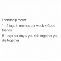 Real Friends, Girl Memes, and Friendship: Friendship meter:  1 2 tags in memes per week Good  friends  5+ tags per day you ride together you  die together Real friends tag each other in enemies, right @mytherapistsays?