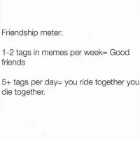 Friends, Memes, and Good: Friendship meter:  12 tags in memes per week= Good  friends  5+ tags per day: you ride together you  die together. Tag your ride or die