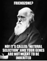"""Friendzone, Sick, and Charles Darwin: FRIENDZONE?  NO! ITS CALLED """"NATURAL  SELECTION"""" AND YOUR GENES  ARE NOT MEANT TO BE  INHERITED <p>Charles Darwin Is Sick Of People Complaining About The Friendzone.</p>"""