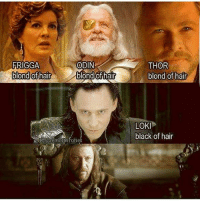 Memes, Black, and Hair: FRIGGA  ODIN  blond of hair  blond hair  NIG gaemofth one  THOR  blond of hair  LOK  black of hair 😱 . eddardstark nedstark seanbean thor loki odin marvel chrishemsworth tomhiddleston gotmemes gameofthronesmemes gameofthronesfamily gameofthroneshbo got gameofthrones