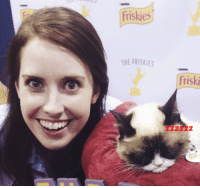 Overly Attached Girlfriend and Grumpy Cat: Friskies  THE FRISKIES  friski  ZZ Overly Attached Girlfriend and Grumpy Cat