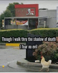 Funny, Death, and Evil: FRO  Though I walk thru the shadow of death  fear no evil